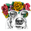 https://www.ilmondochevorrei.info/wp-content/uploads/2020/03/logo_icona100x100_v.png